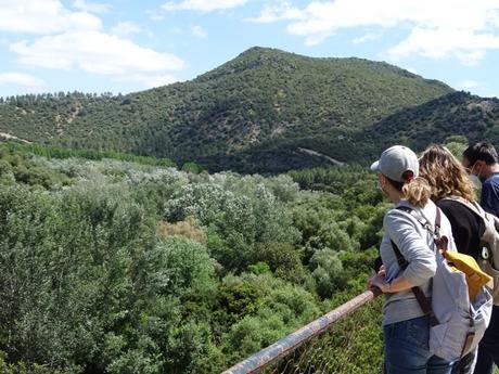 El Chaparro de la Vega y la Vía Verde de la Sierra, una ruta perfecta para un paseo en bicicleta con niños.