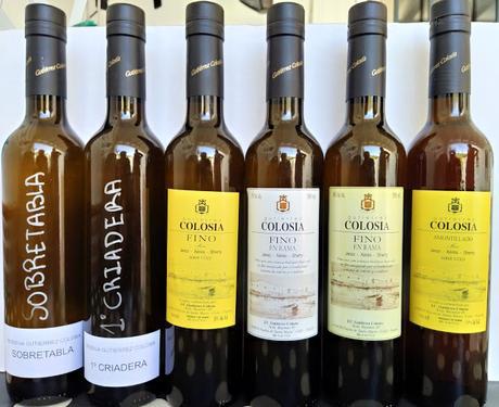 ATENEO DE VINO: Cata virtual vertical de vinos de crianza biológica de «Bodegas Gutiérrez Colosía»