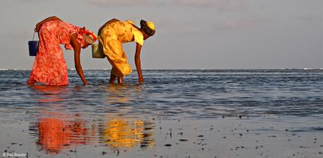 Women and Oceans was one of the winners in the Photo Competition. Author: Des Bowden.