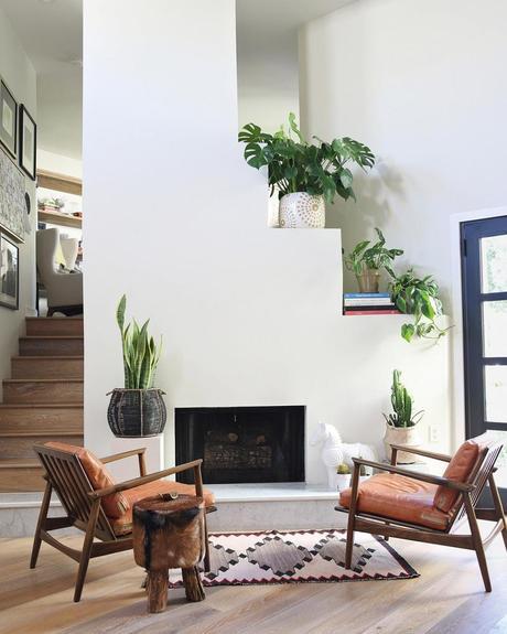 Decorar con cactus, las plantas con superpoderes_9