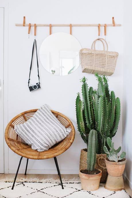 Decorar con cactus, las plantas con superpoderes_2