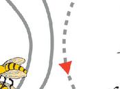 abejas, talento oculto
