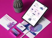 EnvioKanguros: Plataforma para generar guias envío