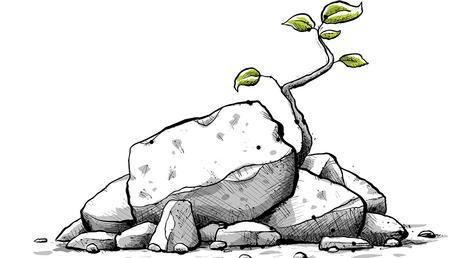 Resiliencia empresarial: cómo potenciarla en época de crisis | Recursos  Humanos | Apuntes empresariales | ESAN