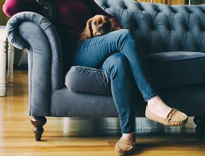 Mujer sentada en un sillón con un perro en el regazo y mocasines