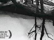 Ciclo películas rusas sobre Guerra: infancia Iván