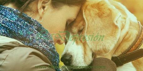 Depresión en los perros: Qué es, Síntomas, Tratamientos y Consejos