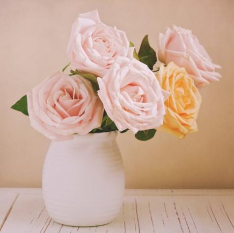 ¿Por qué regalar flores rosas?