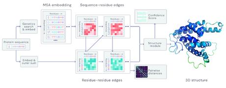 AlphaFold2, ¿un antes y un después en la biología estructural?