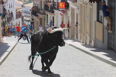 El toro de cuerda de Carcabuey vuelve a suspenderse por segundo año consecutivo a consecuencia de la Covid-19