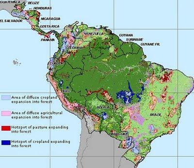 deforestacion amazonas, estado selva amazonas, amazonas, selva amazonica, amazonia