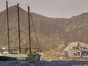 Greenpeace denuncia lamentable servicio habitaciones hotel Algarrobico.