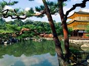 encanto paisajismo japonés. jardines Kyoto