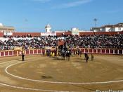 sociedad propietaria plaza toros Fuengirola debe adaptarla reglamento taurino Junta