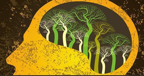 Neurogénesis o la Siembra de Nuevas Opciones
