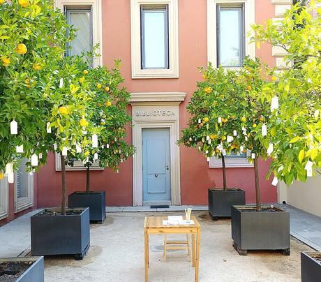 El árbol de los deseos de Yoko Ono está en Madrid