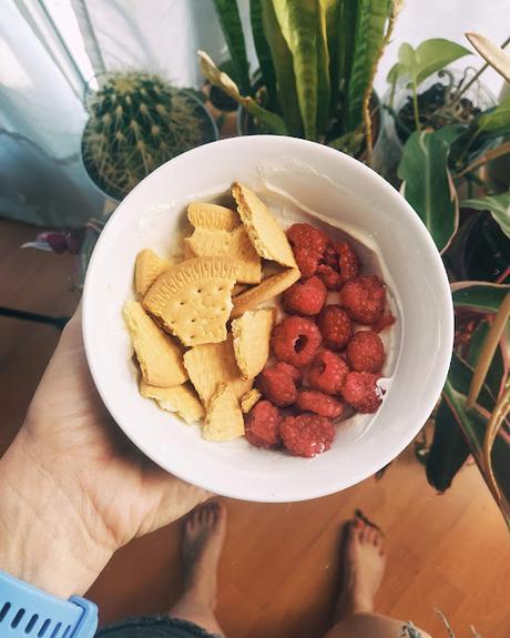 Probando Fage: yogur griego colado