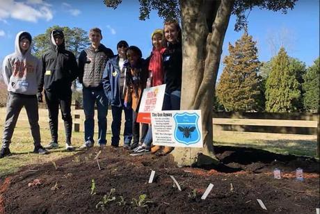 Adolescentes plantan 20 km de jardines para abejas 4