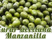 mejor método curar aceitunas manzanilla