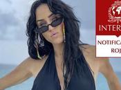 Interpol busca Inés Gómez Mont países delincuencia organizada