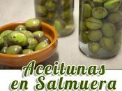 Aceitunas curadas estilo tradicional conservadas salmuera.