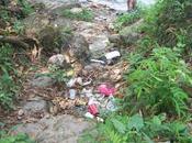 Elimina plastico vida