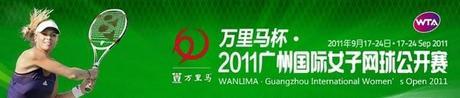 WTA: Kirilenko avanza en China y Goerges en Korea
