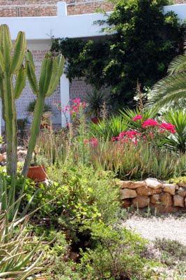 Un jard n en el desierto paperblog for Jardin del desierto