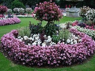 Plantar en macizos o canteros paperblog for Canteros de jardin