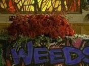 Weeds llegó...¿a final?