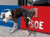PSOE versus Ambos pretenden salvar España.