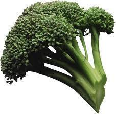 Cuáles son las propiedades del Brócoli? (PARTE 1)