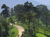 Viajes: norte Tailandia motocicleta