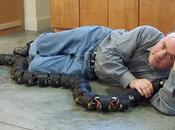 escurridizas como reales pero útiles: Serpientes-robot