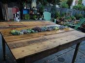 mesa comedor palets, decorada suculentas