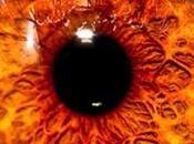colores ojos raros mundo