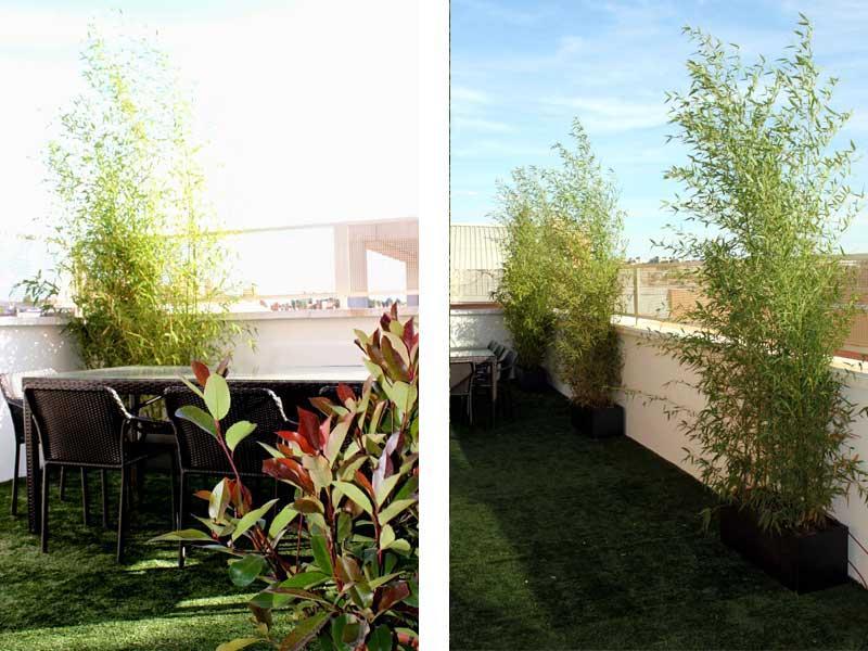 Antes y despu s jardin en tico paperblog - Jardines en aticos ...