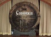 Para conocer sobre orígenes Codorniu