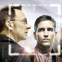 Person of interest (TV) (2011)