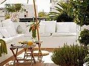 Plantas para balcones bajo mantenimiento