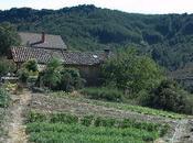 Agricultura ecológica Comunidad Valenciana: problemas soluciones