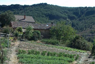 Agricultura ecológica en la Comunidad Valenciana: problemas y soluciones