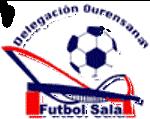 Curso monitor fútbol sala ourense