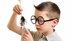 Niños más inteligentes (II)