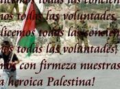 Llamamiento apoyo Palestina