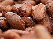 Precio cacao subirá mayor consumo chocolate