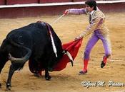 Castella: plaza torear, matar toro…'