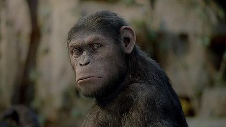 El Origen del Planeta de los Simios podría tener una secuela