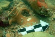 Hallan una ciudad romana sumergida en Isla Cristina