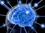 Llegan neurociencias